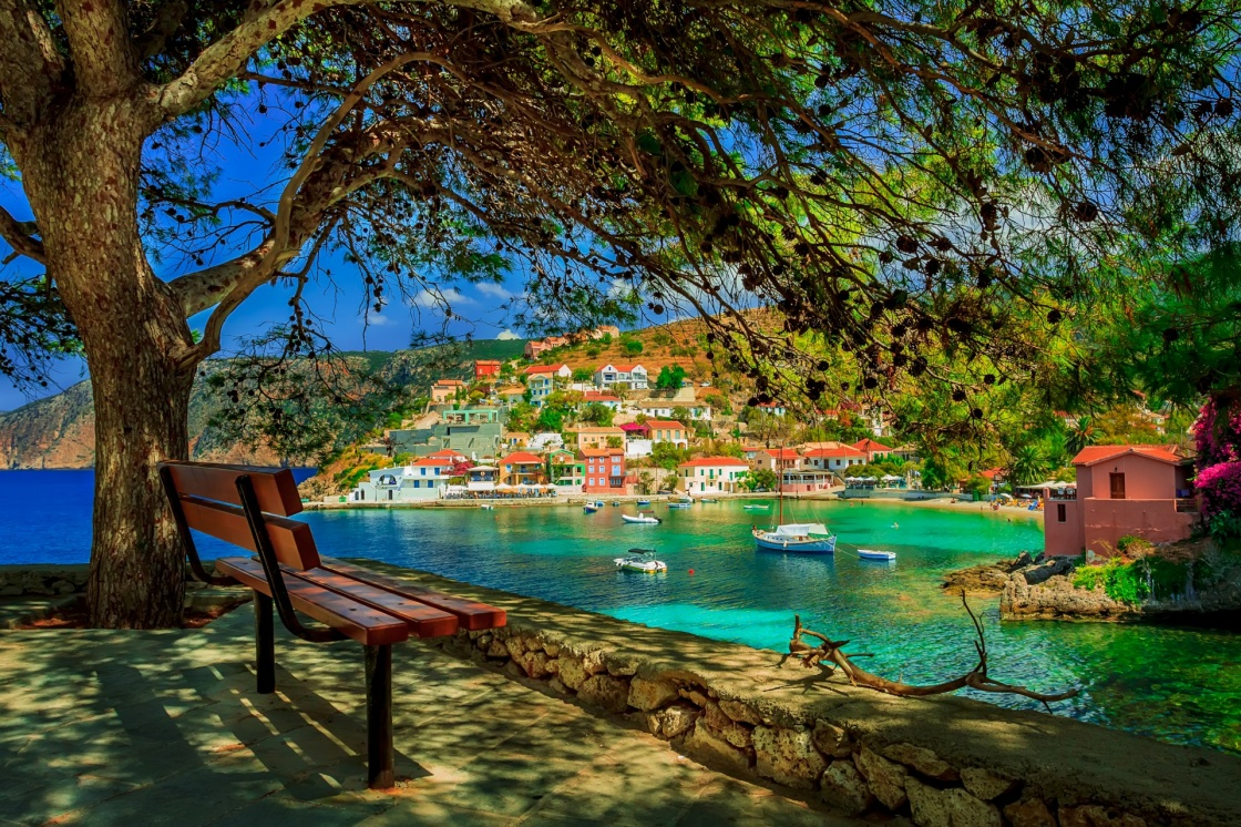 'Bench under a tree on a sunny day at Assos beach, Kefalonia, Greece' - Cefalonia